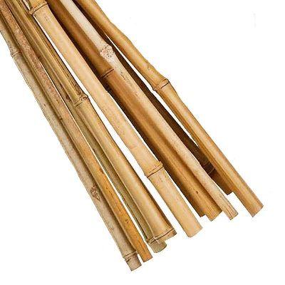 Gardman Bamboo Cane 1.5m - Pack of 20